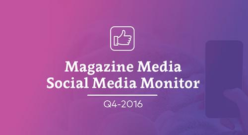 Social media monitor Q4 2016